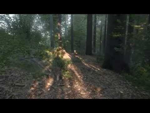 Alpha de Kingdom Come Deliverance mostra uma floresta fotorrealista [vídeo] - TecMundo
