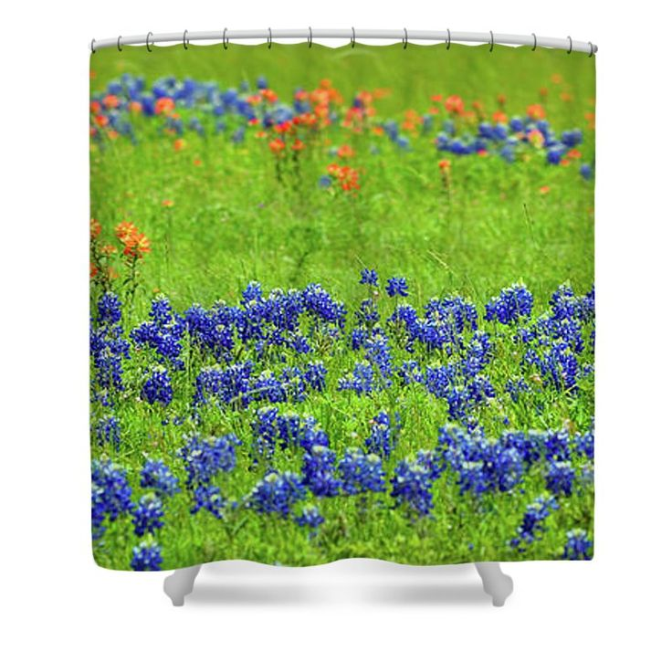 Shower Curtain - Decorative Texas Bluebonnet Meadow Photo A32517 Shower Curtain by Mas Art Studio, #Shower #Curtain #Photo #Bluebonnets #Decorative #MasArtStudio #WallArt #ArtForSale #MixedMedia #MarthaAnnSanchez #Gestural #Interiors #ArtLoversOnline #CanvasPrint #GicleePrint #Orange #Blue #New #LivingRoomArt #BedroomArt #ChildrensRoomArt #Creative #Kitchen #OfficeSafe #LaundryRoom #Art #Office #ChildsRoom #Painting #Reproduction #SunRoom #Patio #Expressive #ModernArt #Outdoors #Floral…