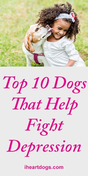 how to train a dog to help with depression