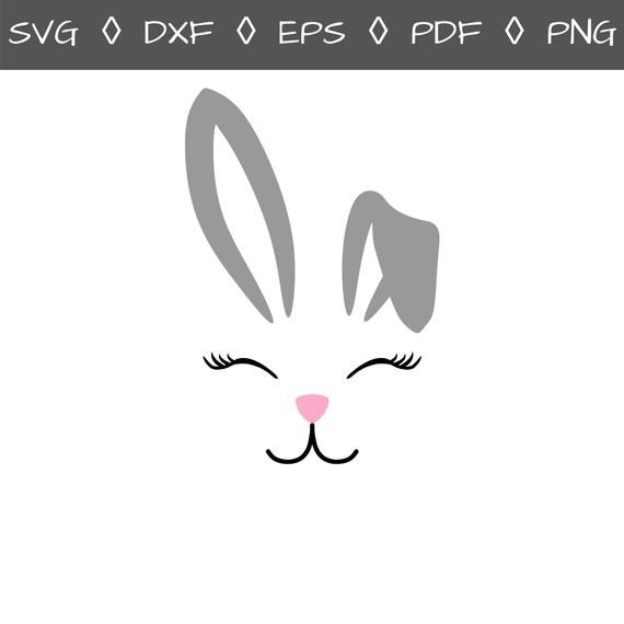 Pin On Pets Svg Files