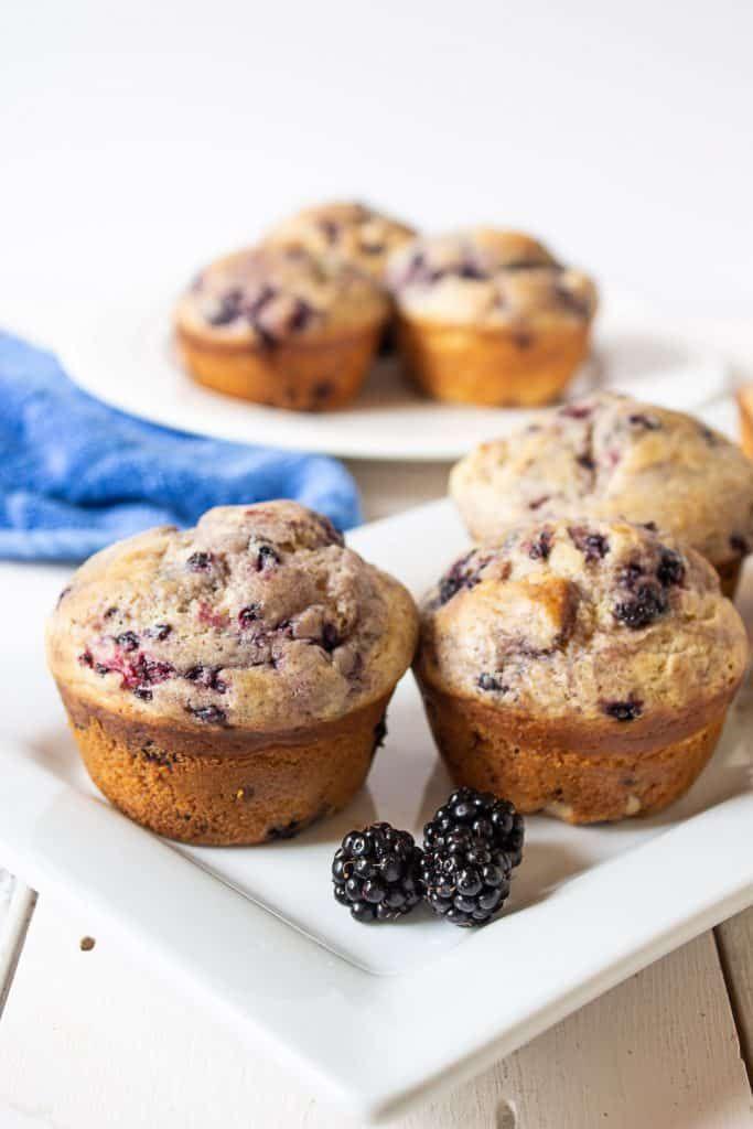 Blackberry Muffins Recipe Blackberry Recipes Blackberry Recipes Easy Berries Recipes