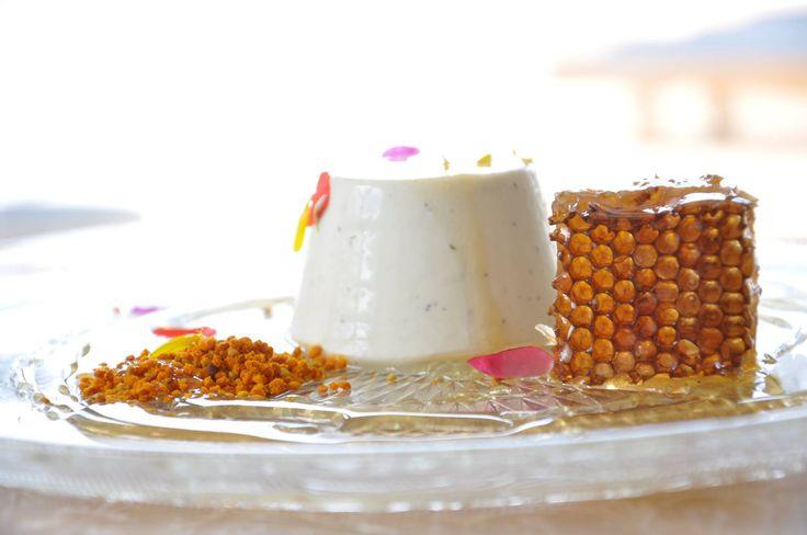 Grandma's Restaurant- lavender scented panna cotta