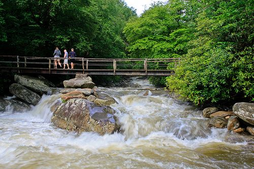 10 of the Best Hikes in the United States, Great Smokey Mountain National Park shown in photo