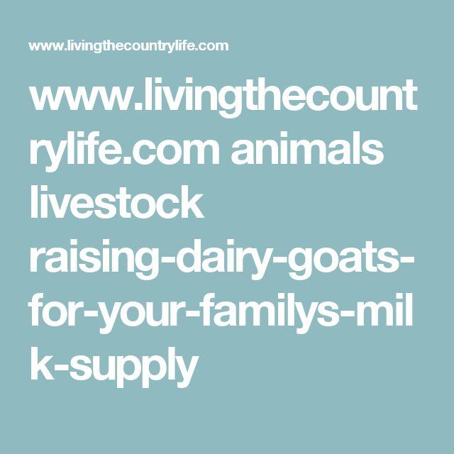 www.livingthecountrylife.com animals livestock raising-dairy-goats-for-your-familys-milk-supply