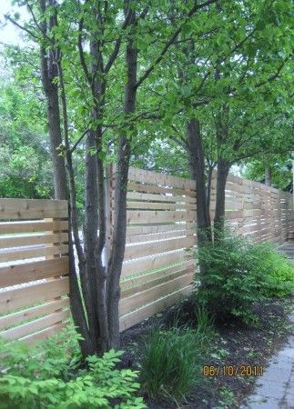 fence idea for the backyard