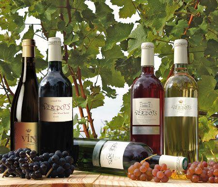 Vins AOC Bergerac et Monbazillac : Vignoble des Verdots