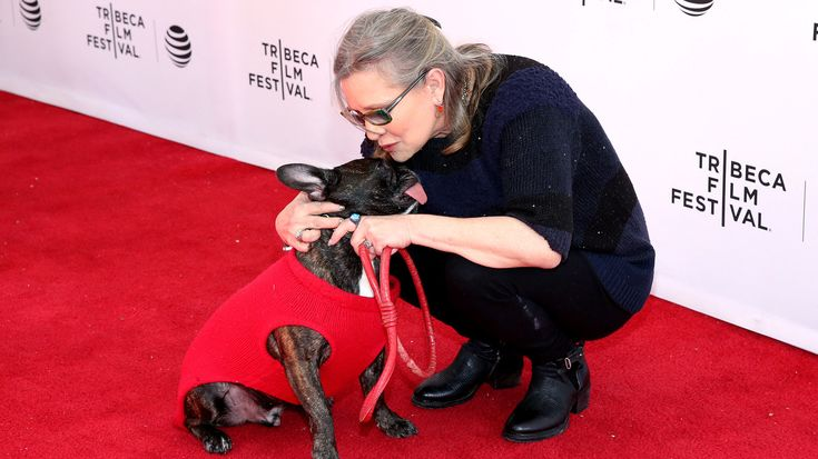 LISTEN: Carrie Fisher, Terry Gross — And Gary The Dog : The Two-Way : NPR