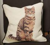 cat themed pillow 180 PLN