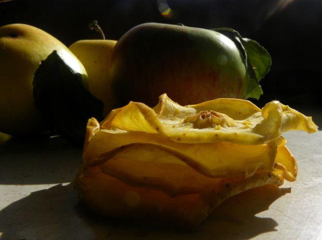 chips di mela essiccate (5)