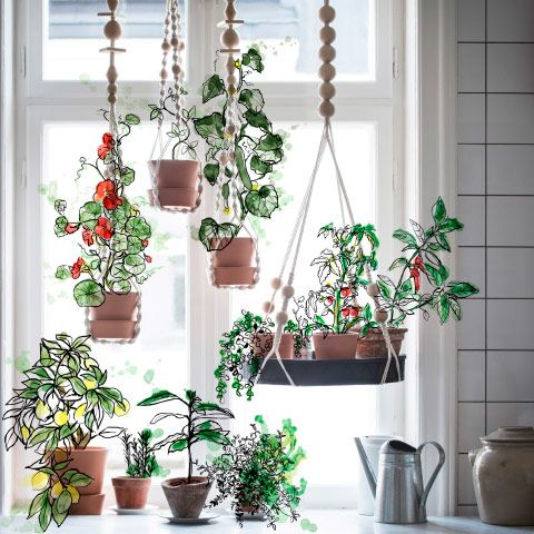 A high window with green plants in hanging plant pots. IKEA- we could put these in collaboration room to add some flare and color. CHEAP OPTION.