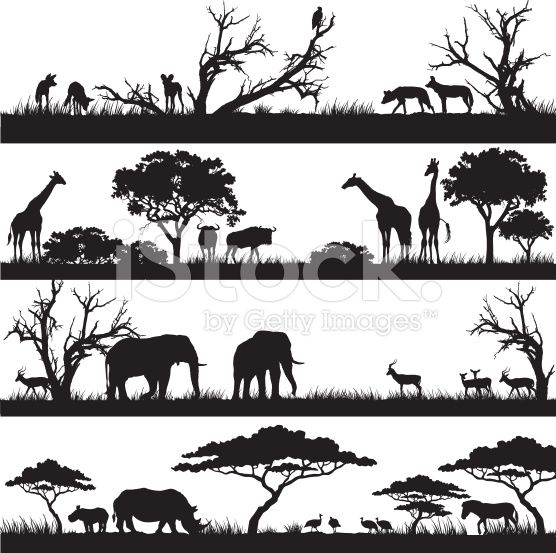 {for tracing} African safari silhouettes royalty-free stock vector art