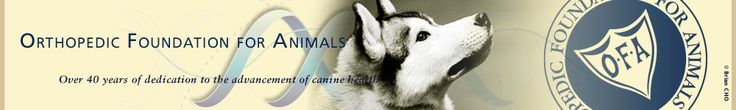 Orthopedic Foundation for Animals   health  test results