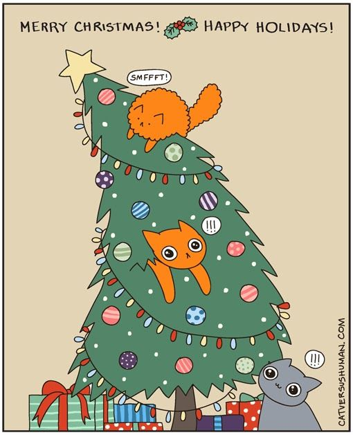 118 best images about my cat vs human board on pinterest for Happy christmas vs merry christmas