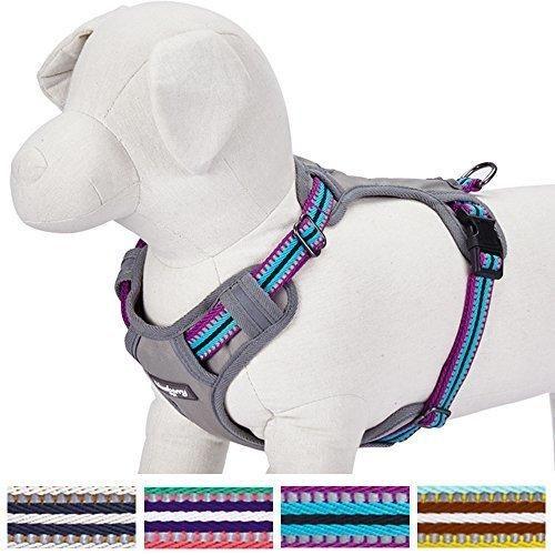 "Blueberry Pet 4 Colors Soft & Comfy 3M Reflective Multi-colored Stripe Padded Dog Harness Vest Chest Girth 26""-39"" Neck 24""-39"" Violet & Celeste Mesh Harnesses for Dogs"