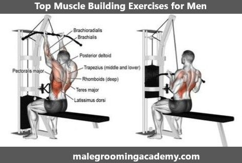 Top Muscle Building Exercises #Fitness #Health #Life #Love #diet #quote #food