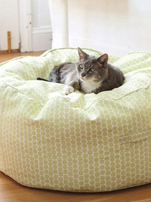 Need to make one of these for Finn: Cat Beds, Diy Home Decor, Beans Bags Patterns, Beanbag Diy, Beanbag Poufs, Beans Bags Chairs, Beanbag Patterns, Diy Beans, Diy Beanbag