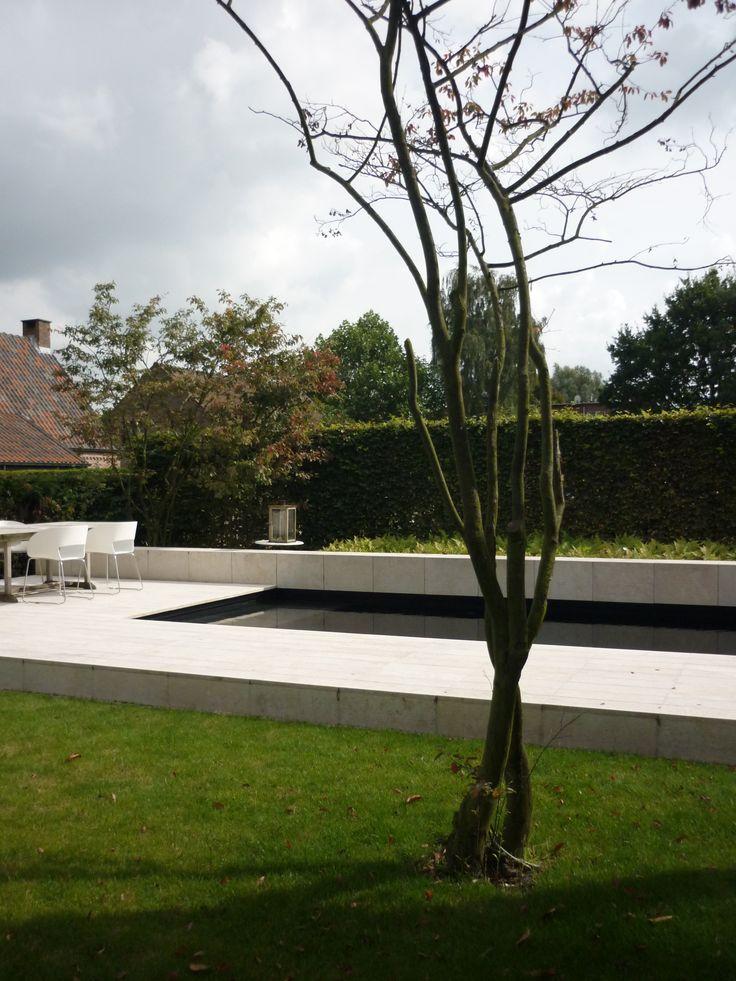 studio k - tuin met zwembad aartselaar 2008 (verhoogd terras, zandsteen, zwembad, amelanchier)