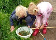 Kinderen beleven een onvergetelijke vakantiein de natuur bij kindercamping De Lemeler Esch. Wij dagen ze uit hun eigen spel te spelen, vriendjes te maken en mee te doen aan bijzondere activiteiten…