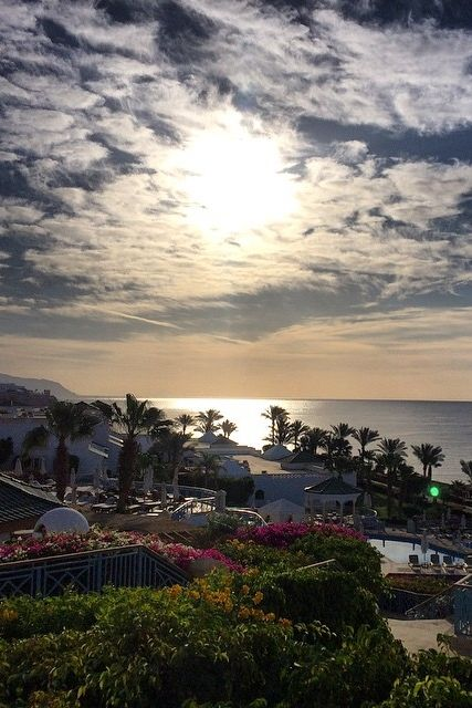 Looking out to the Red Sea at Hyatt Regency SharmelSheikh. Photo courtesy of @traveler_ag.