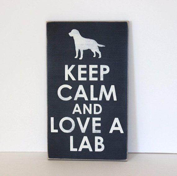 lab, labrador retriever, labrador, retriever, keep calm and love a lab, dog frame, dog sign, rescue dog