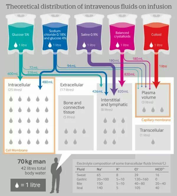 921 best Nursing school images on Pinterest Rn humor, Nurse - iv infusion nurse sample resume