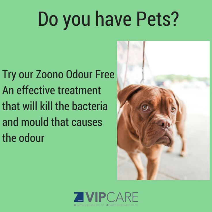 Zoono Odour Free - eliminates pet odours, foot odours and various other odours.