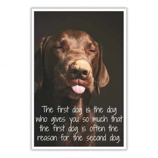 THE FIRST DOG LABRADOR QUOTE WALL PRINT POSTER