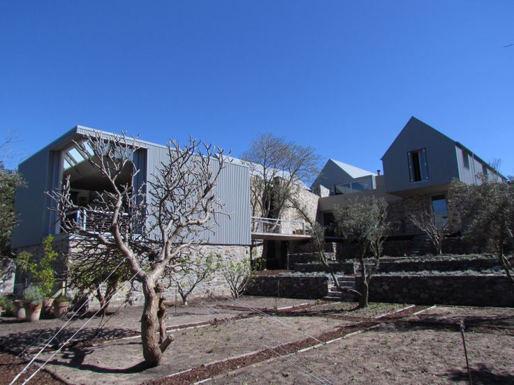 zinc house  stellenbosch south africa  slee&co architects  www.slee.co.za