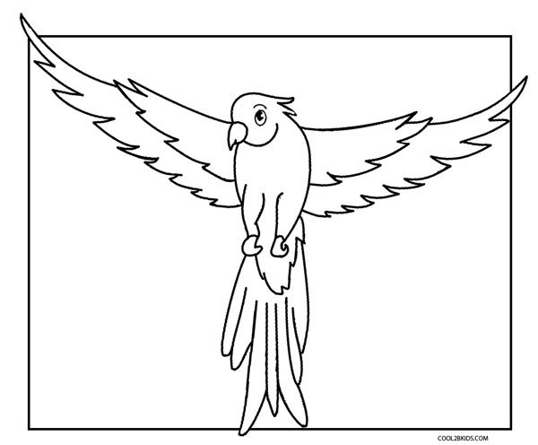 74 Best Birds Coloring Pages Images On Pinterest