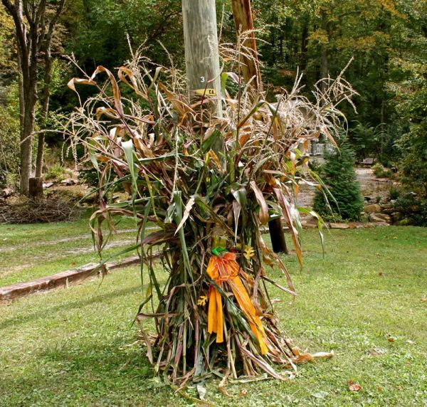 beautiful fall decorations made with dried corn and corn stalks - Halloween Corn Stalks