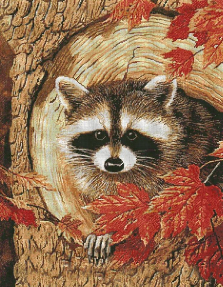 counted cross stitch wildlife patterns | Curious Raccoon Counted Cross Stitch Pattern | eBay