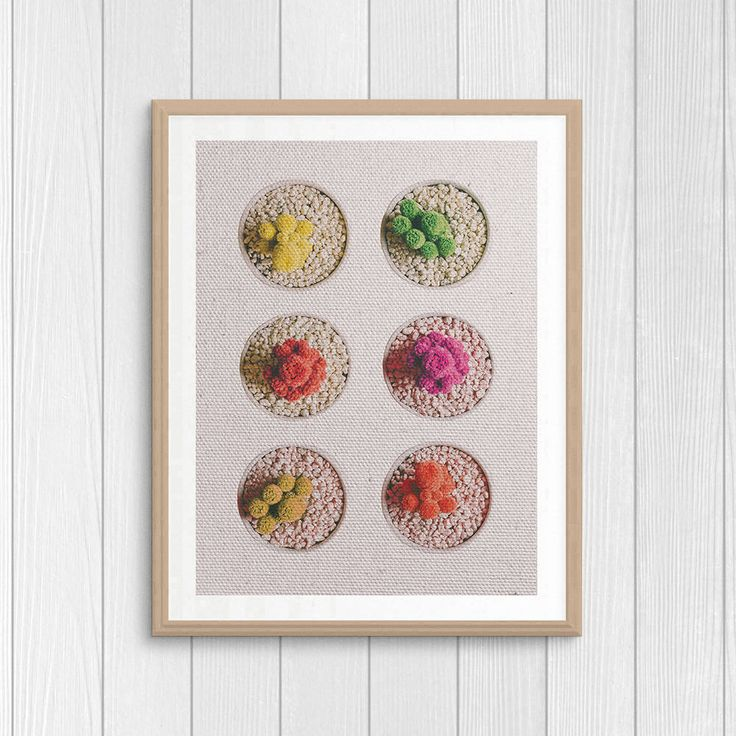 Cactus Print - Home Plants - Cactus Photography - Colorful Cactus - Minimal Wall Art - Modern Home Decor - Plant Art Gift - Botanical Print by Thestrangerboutique on Etsy