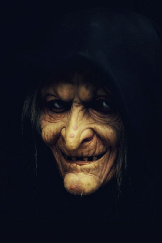 """""""I told you to be careful what you wished for,"""" the Hag told Nolly, long after the damage had been done, of course."""