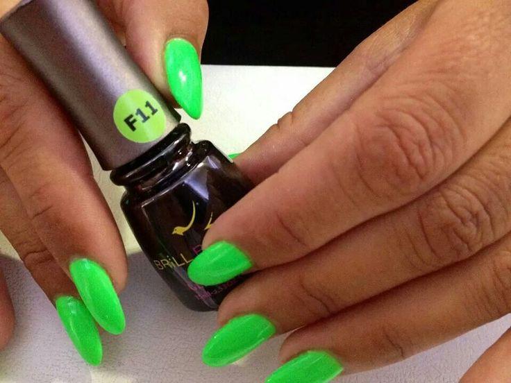 Brillbird neon colour