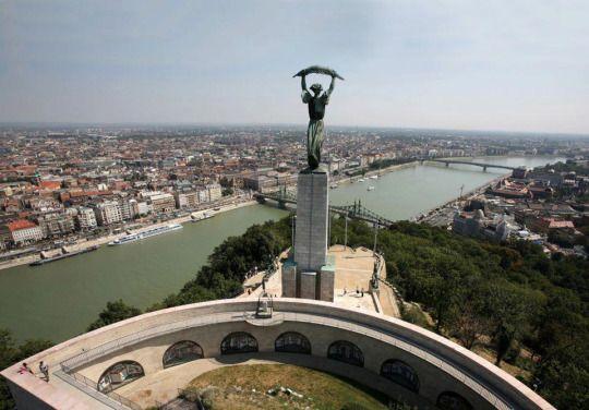 Budapest Bug