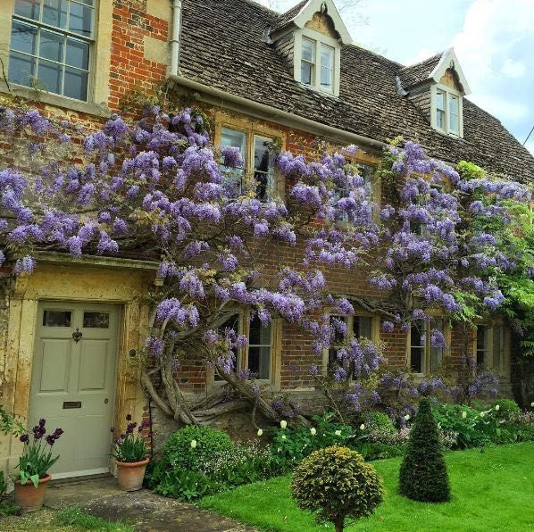 English Country House Exterior & Gardens