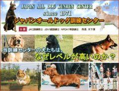 埼玉県大里郡にあるジャパンオールドック訓練センターです家庭犬のしつけや訓練警察犬訓練所として埼玉県警察本部の嘱託活動をするなど数々の経験と実績を誇っております訓練済家庭犬血統書付きの販売もしております  開業年を迎えるジャパンオールドッグ訓練センターは警察犬訓練所として埼玉県警察本部の嘱託活動をするなど数々の経験と実績を誇っております   現在は全犬種主体のしつけ訓練ドッグショーマナー訓練競技会計画繁殖メインはゴールデンレトリバーラブラドールレトリバーシェパードを重点においています   また元気すぎるいたずら好き横暴吠える甘がみするなど愛犬に手をやいてる方いらっしゃいませんか犬の訓練開始時期は生後ヶ月が最適と言われています出来る限り年令が若いうちにはじめるのがいいでしょう年をとると訓練が入りずらくなってしまいます   ジャパンオールドッグ訓練センター では貴方のご要望に応じて  御愛犬を訓練しつけいたしますその他嘱託警察犬や訓練競技用の訓練しつけも行いますのでお気軽にご相談ください tags[埼玉県]