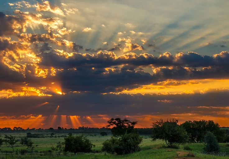Moody skies make for spectacular sunsets 🌅  📷: stormsignal on Flickr #sunset #Magaliesberg #SouthAfrica #CrepuscularRays