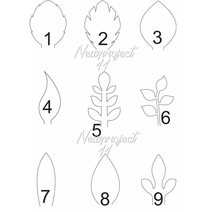 Best  Leaf Template Ideas On   Fall Leaf Template