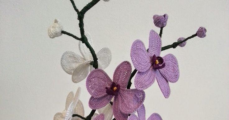 Uno dei fiori più affascinanti del mondo vegetale. Simbolo di perfezione spirituale e di armonia ha un fiore bello e delicat...