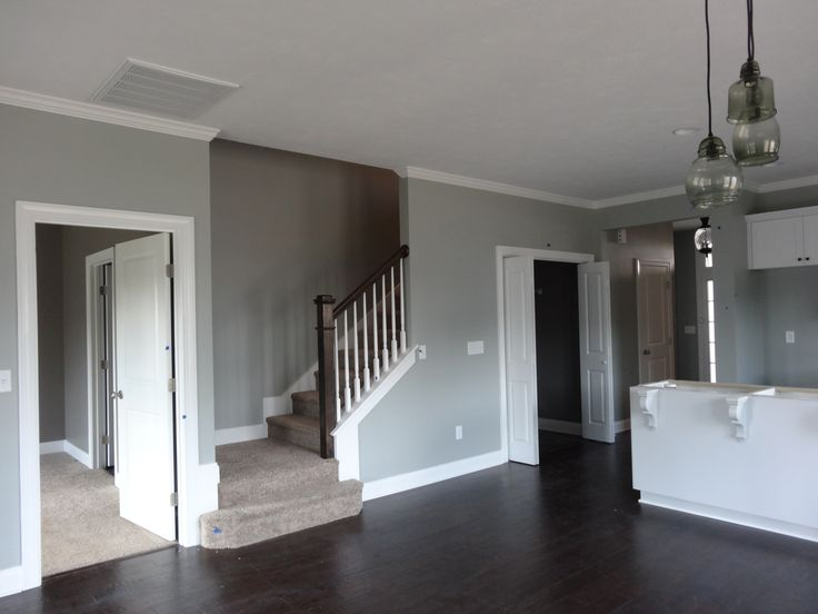 Sherwin Williams Magnetic Gray - gray green with touch of blue