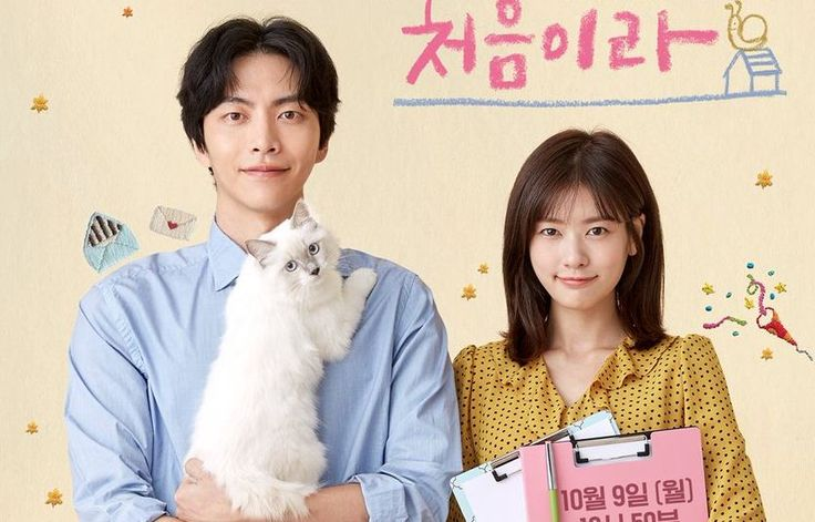 Because this is my first life -  korean drama - watch online