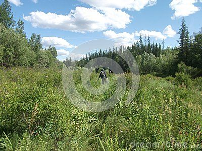 Photographed in Yakutia-Vilyuysk district