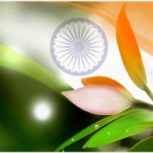 Independence Day Of India Wallpaper   67th independence day of india wallpapers, 68th independence day of india wallpapers, animated independence day of india wallpaper, happy independence day of india wallpapers, independence day of india 2010 wallpapers, independence day of india desktop wallpapers, independence day of india wallpaper, independence day of india wallpaper free download, independence day of india wallpapers 2014, independence day of india wallpapers hd