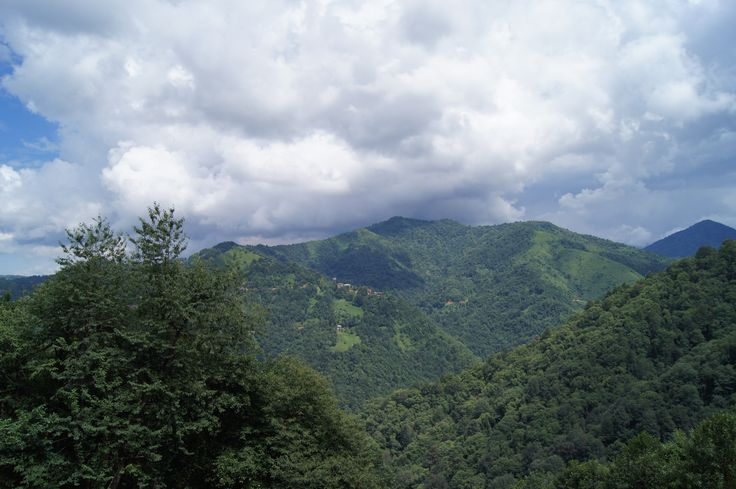 #rize #turkey #nature #forest #amazing #green #scenery