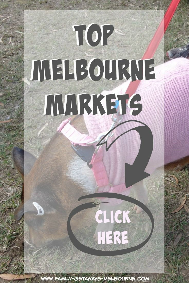 Craft markets, farmers markets, trash and treasure markets, Melbourne has them all and so much more