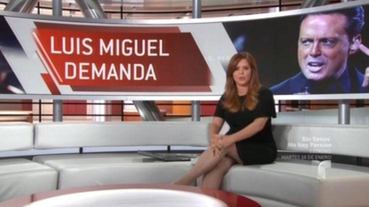 Luis Miguel Inicia El Ano Con Problemas Legales