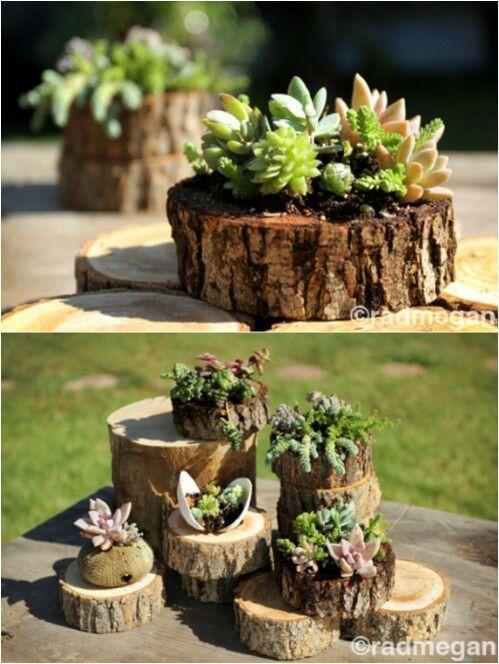 20 erstaunliche Blumenkübel und Rasenornamente aus alten Baumstümpfen – norma maldonado