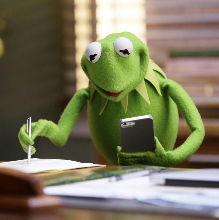25+ Best Ideas About Kermit The Frog On Pinterest