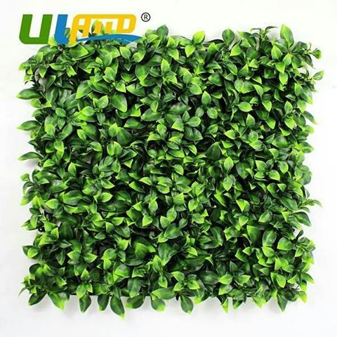 "12 Pieces 50Cm X 50Cm Artificial Faux Ivy Leaf Hedge Panel Patio Balcony Privacy Fence Screen Decoration Panels Https://Icon2.Com/Products/12-Pieces-50Cm-X-50Cm-Artificial-Faux-Ivy-Leaf-Hedge-Panel-Patio-Balcony-Privacy-Fence-Screen-Decoration-Panels Forsale Sale Promo Wall Grass Facade Icon2 <a href=""http://remodelstl.org"" alt=""St Louis Construction""> <h2>St Louis Construction & Remodeling</h2> </a> #wall #icon2 #sale #promo #facade #forsale #grass - <a…"